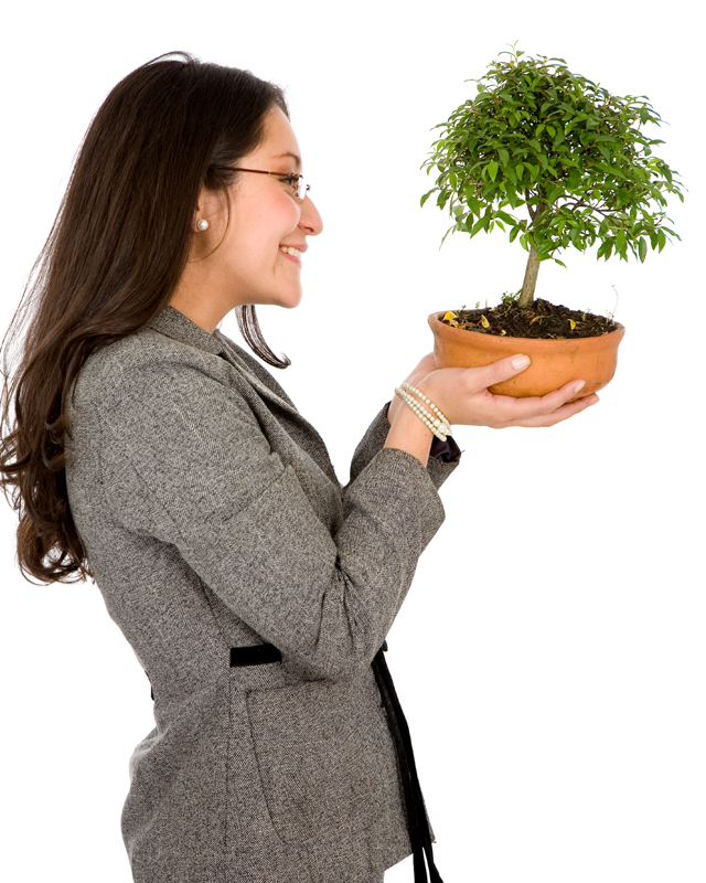 business woman holding a bonsai